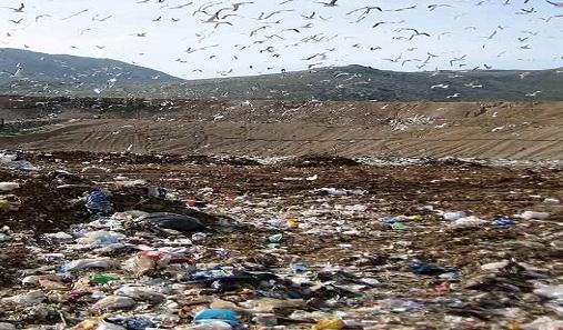 Alcuni rifiuti (foto d'archivio)